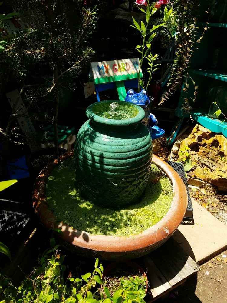 Plant Play Nursery