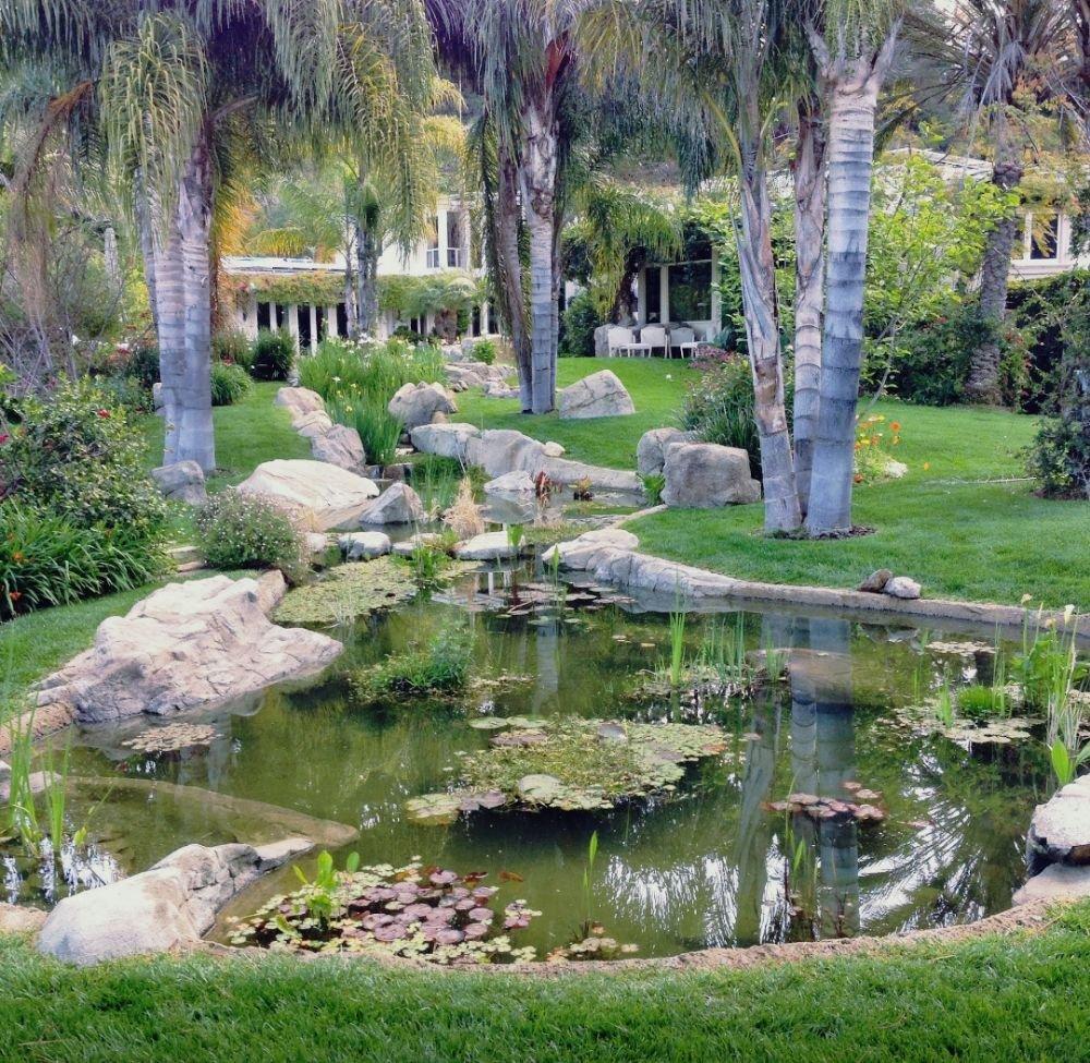 Water Garden Pond In Beverly Hills CA