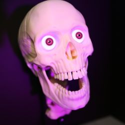Photo Of Halloween Skulls Hartford Vt United States