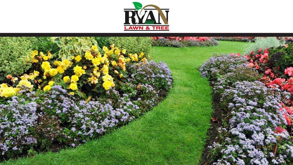 Ryan Lawn & Tree: 3145 E Pythian St, Springfield, MO