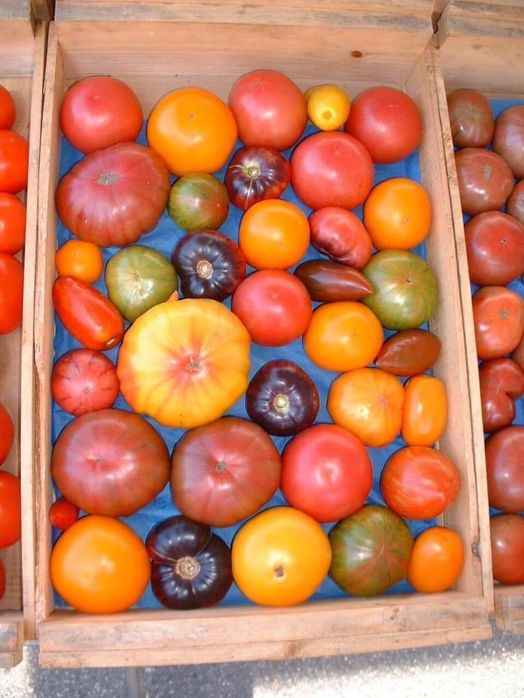 St Johnsbury Farmer's Market: Pearl St, St. Johnsbury, VT