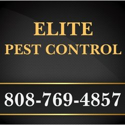 Top 10 Best Termite Inspection In Kailua Kona Hi Last Updated September 2019 Yelp