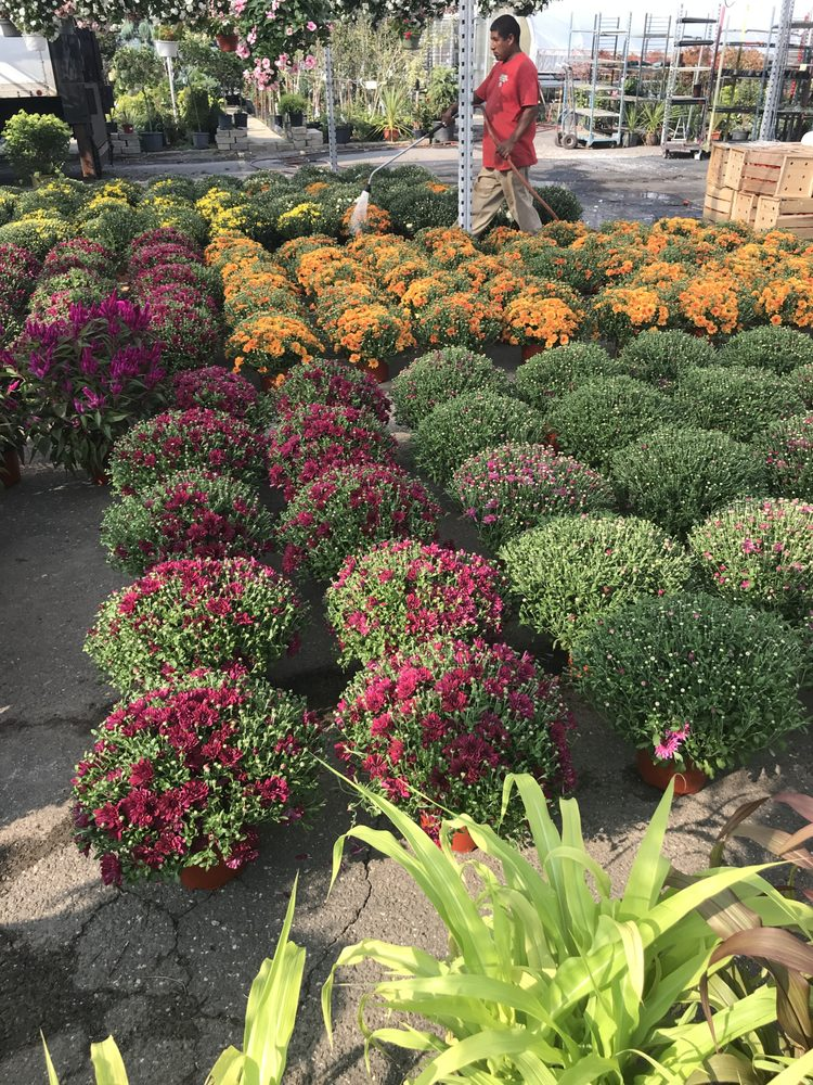 Bergen Garden Center and Farms: 563 River Rd, New Milford, NJ