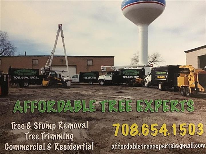 Affordable Tree Experts: Lansing, IL
