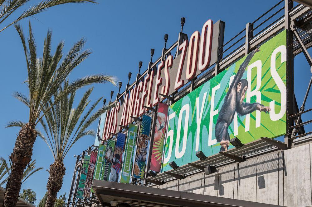 Los Angeles Zoo Botanical Gardens 4910 Photos 1448 Reviews