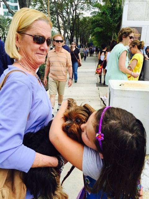 Lauri's Pet Sitting Service: 2305 W. Fig St., Tampa, FL