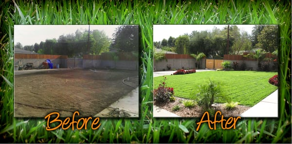 photo of frank pigoni landscape services upland ca united states our backyard our backyard before and after - Backyard Before And After