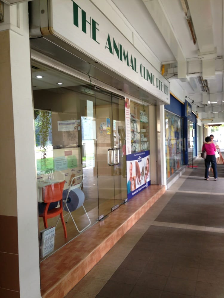 The Animal Clinic Professional Services 109 Clementi St 11 Clementi Singapore Singapore