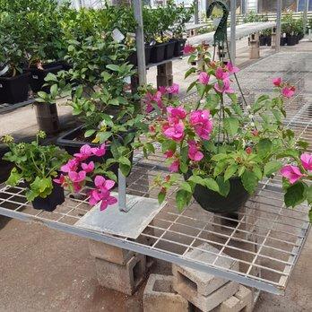 Elliott Gardens - 13 Reviews - Nurseries & Gardening - 6321 Lowell ...