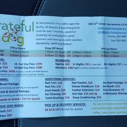 Grateful Dog Daycare - 30 Photos & 108 Reviews - Pet ...