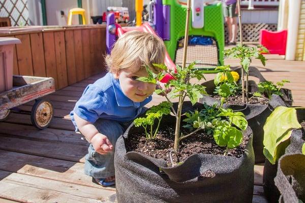 garderie le jardin urbain preschools 6845 rue saint