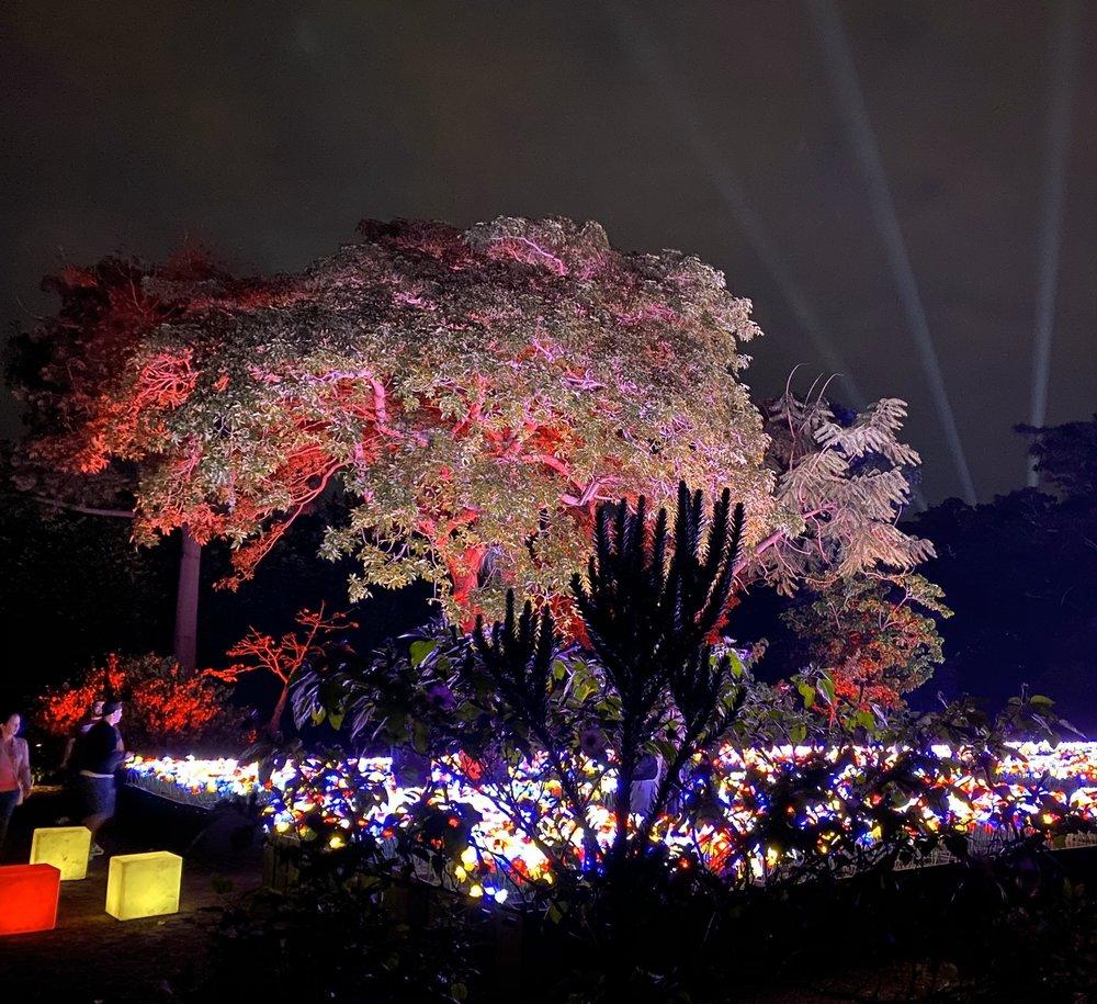 Social Spots from Fairchild Tropical Botanic Garden