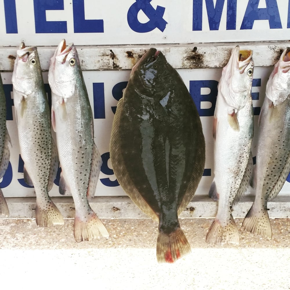 Chops Fishing Guide Service: Port Isabel, TX