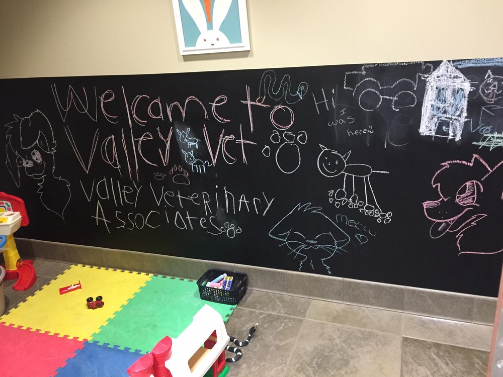 Valley Veterinary Associates: 853 Falcon Park Rd, Lower Burrell, PA