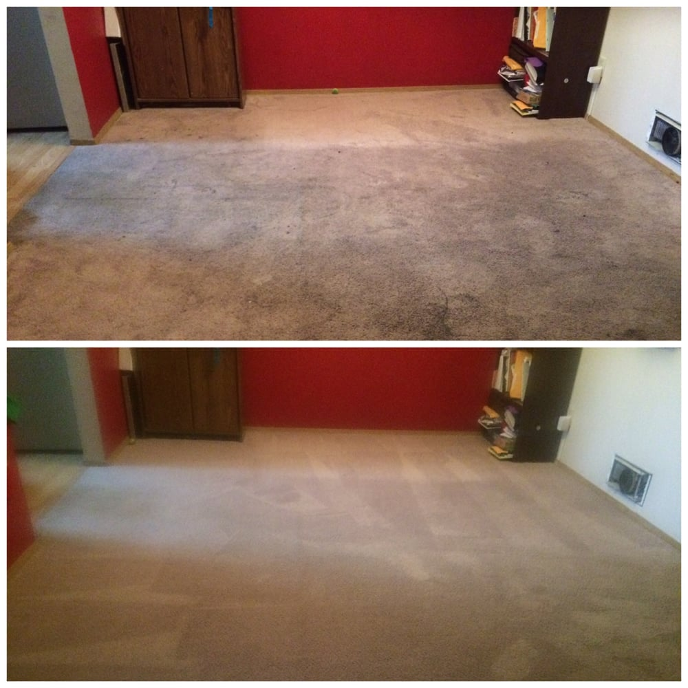 Angel S Carpet Care 54 Reviews Carpet Cleaning