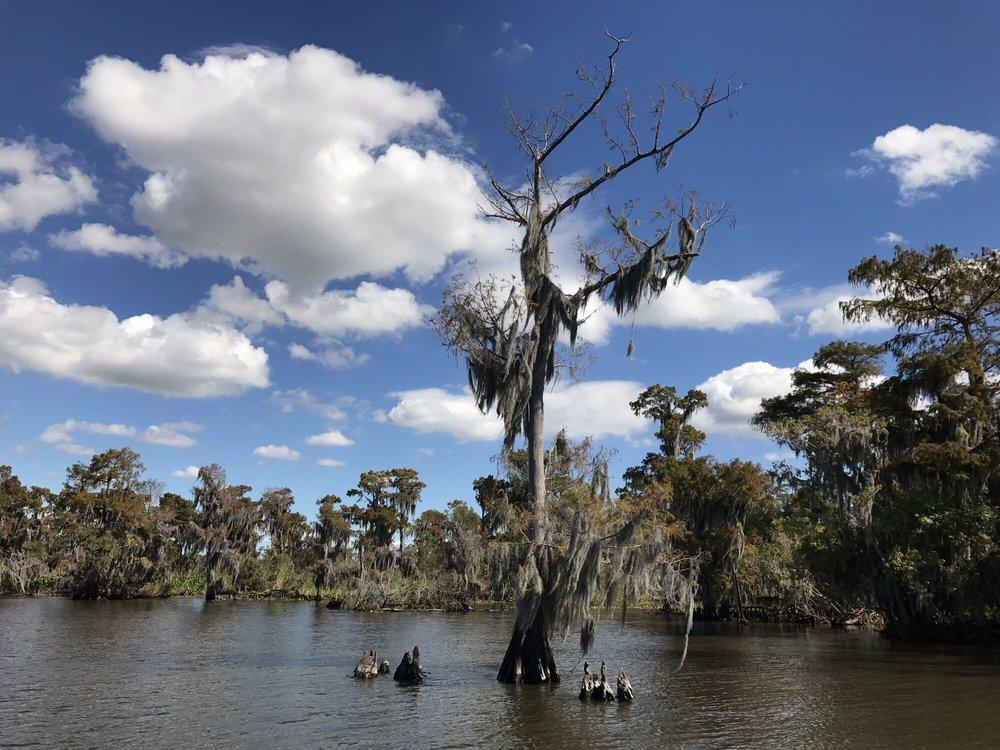 Cajun Style Swamp Tours: 9706 Barataria Blvd, Marrero, LA