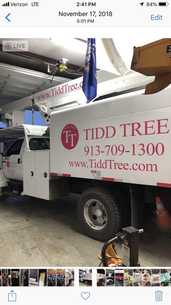 Tidd Tree: Gardner, KS
