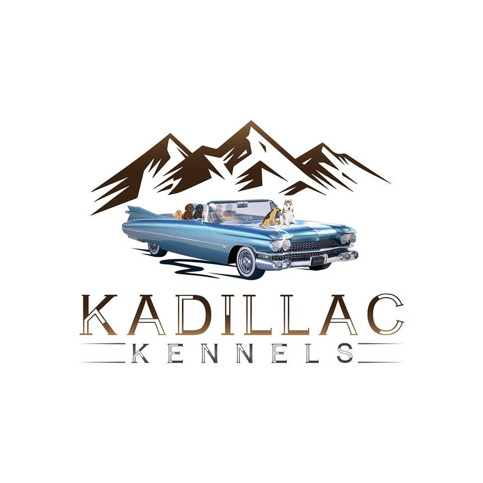 Kadillac Kennels
