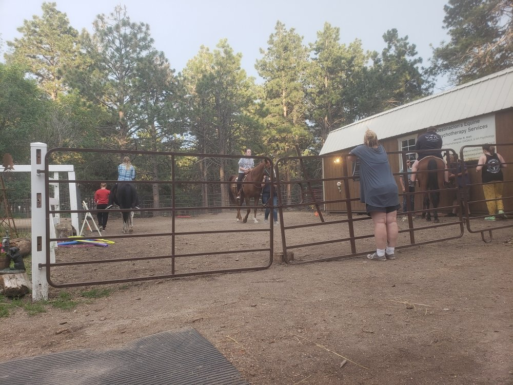 Destinacion's Equine Therapy: 8315 Lakeview Dr, Black Forest, CO