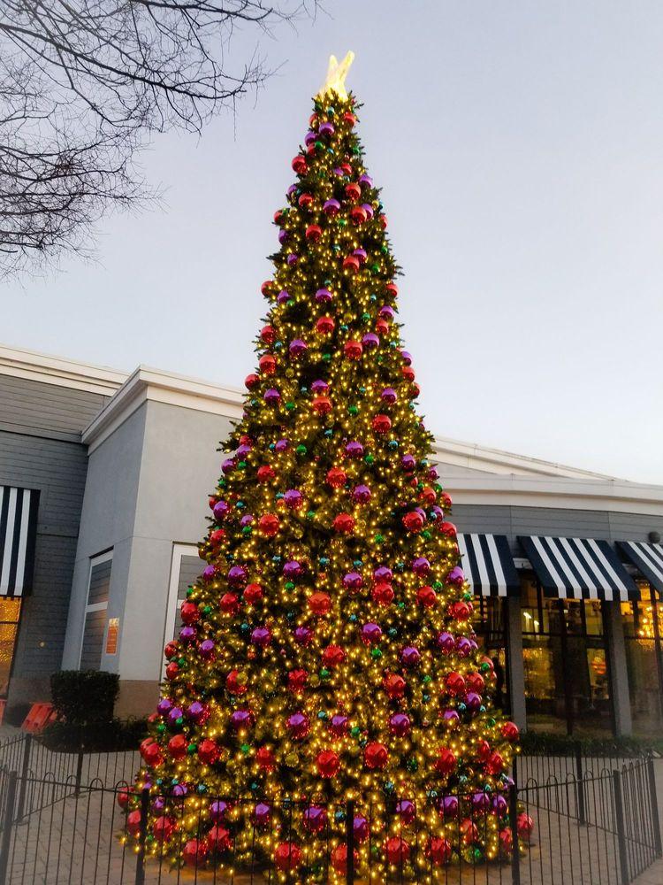 Alameda South Shore Center