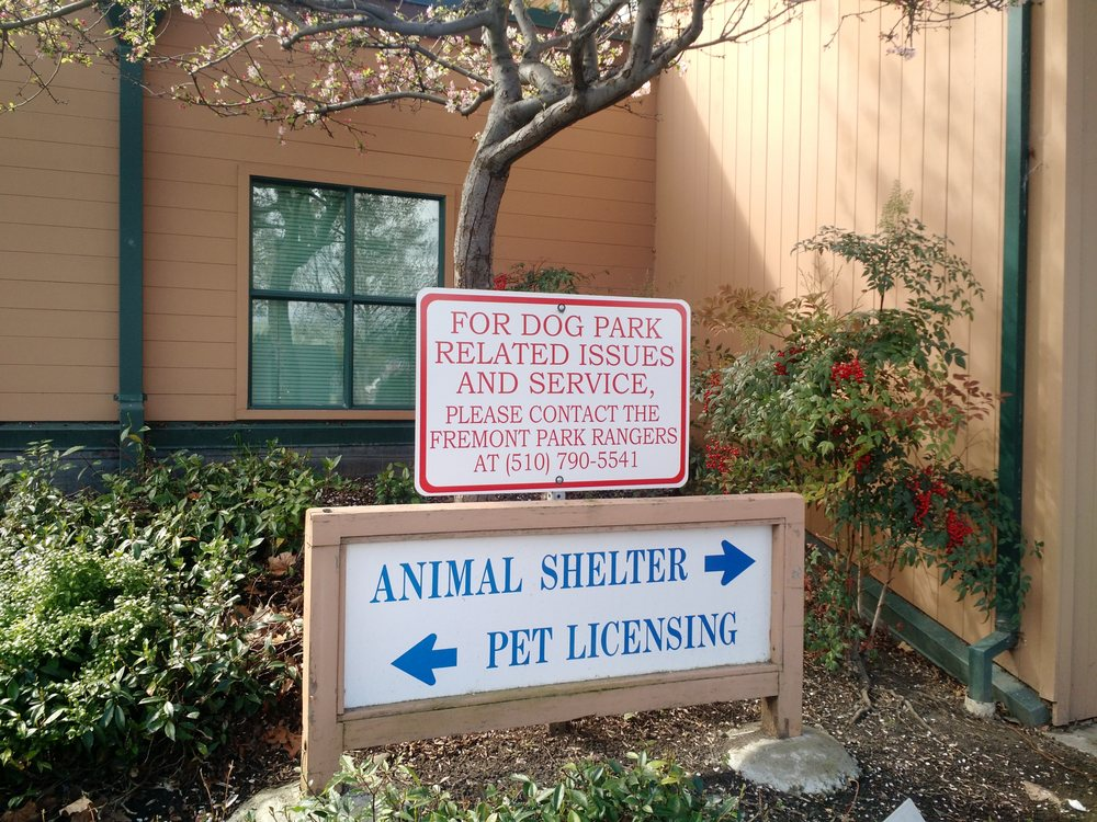 Animal Services-City of Fremont: 1950 Stevenson Blvd, Fremont, CA