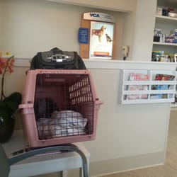 VCA Cottage Animal Hospital 10 s & 53 Reviews Veterinarians
