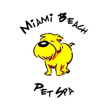 Pet Boarding Miami Beach Fl