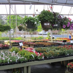 Photo Of Pike Nurseries Woodstock Ga United States