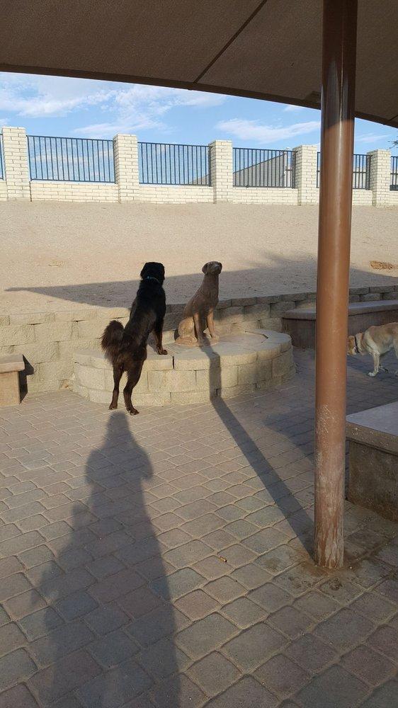 Yuma Dog Park: 1705 E Palo Verde St, Yuma, AZ