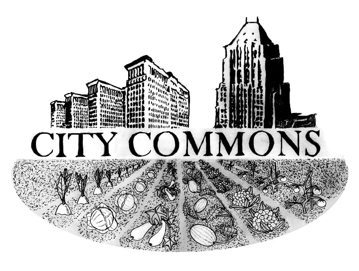 City Commons: Detroit, MI