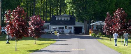 Merry Knoll Campground: 38115 Rt 12E, Clayton, NY