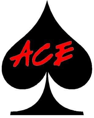 Ace Pool Repair