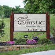 lick veterinary hospital Big