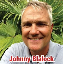 Blalock Landscaping And Drainage: 5120 Milwee St, Houston, TX