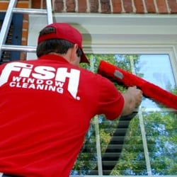 Fish window cleaning window washing 28501 wilmot rd for Fish window cleaning