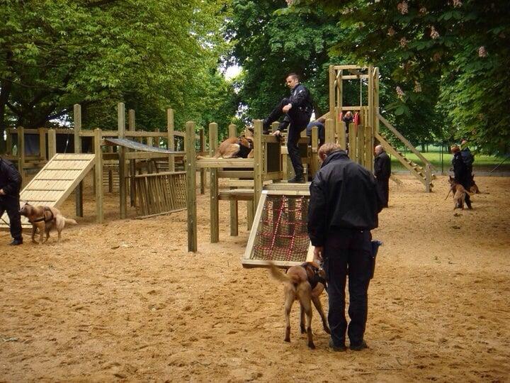 Dog Training Carmichael Ca