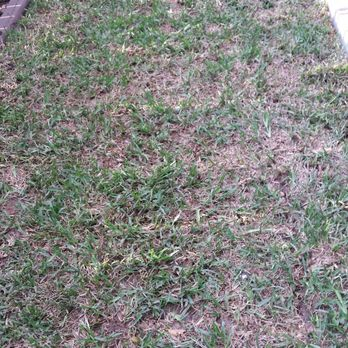 Photo Of Eco Irrigation And Landscaping Cedar Park Tx United States Looks