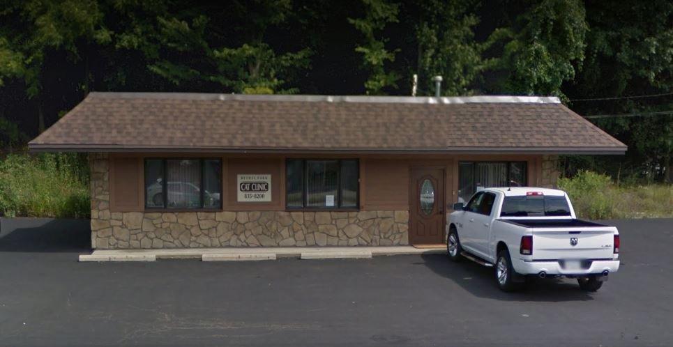 Cat Clinic Bethel Park