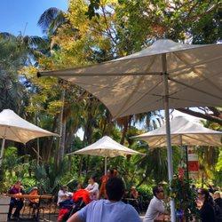 Photo of Botanic Gardens Café - Sydney New South Wales Australia. When outdoors & Botanic Gardens Café - Cafes - Mrs Macquaries Rd Sydney Sydney ...