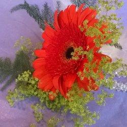 Photo Of Flower Power Florist Garden Centre