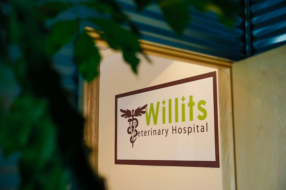 Willits Veterinary Hospital: 351 Robinson St, Basalt, CO