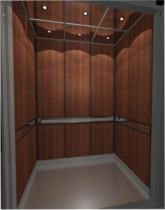 Triton Elevator: 815 Mercury Ave, Duncanville, TX