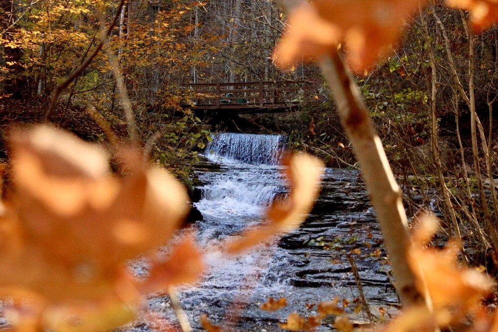 Saunders Springs Nature Preserve: N Wilson Rd, Radcliff, KY