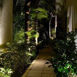Photo Of Signature Landscape Lighting   Tampa Bay, FL, United States.  Beautifully Lit