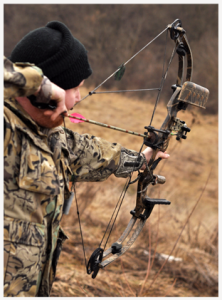 Wolf Hollow Archery: 615 W Truitt Ave, Chillicothe, IL