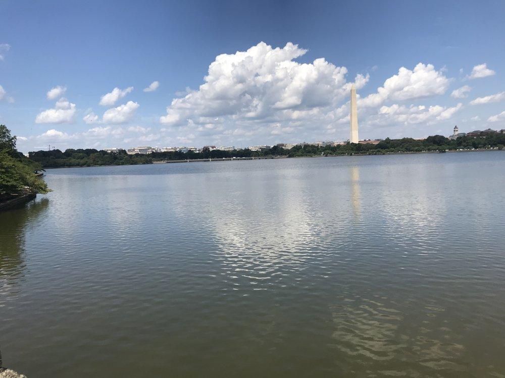 NYA Transportation: Washington, DC, DC