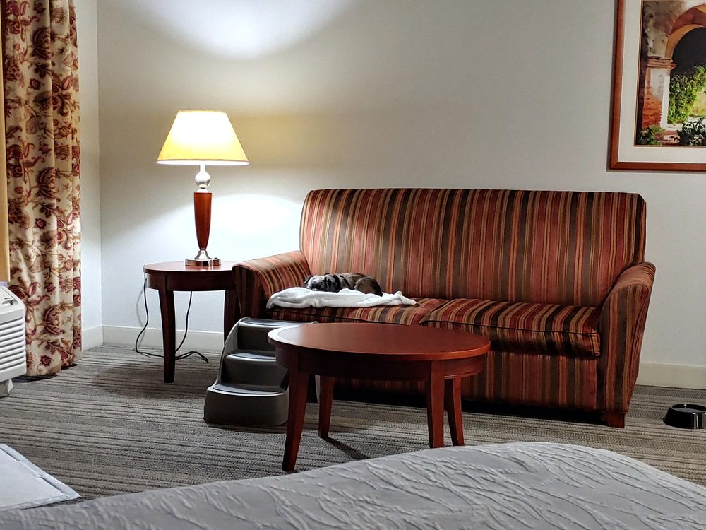 Hilton Garden Inn Roanoke Rapids: 111 Carolina Crossroads Pkwy, Roanoke Rapids, NC