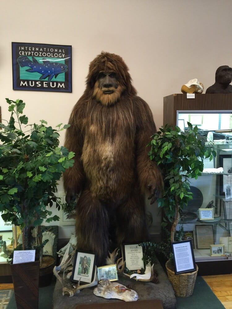 Cryptozoology museum in florida