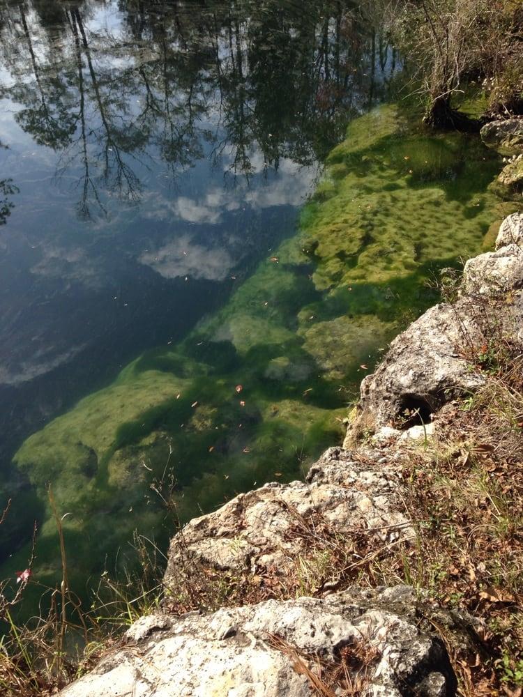 Cherokee Sink: Wakulla Springs, FL