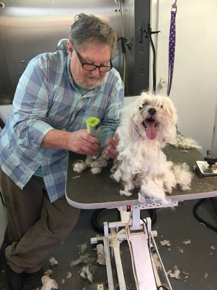 Tally Ho Mobile Pet Groomer: 639 Coxneck Rd, New Castle, DE